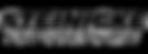 steinigke_showtechnic_logo.png