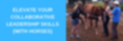 Elevate banner new.png