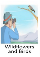 Wildflowersand birds.png