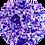 Thumbnail: Fabulous D09