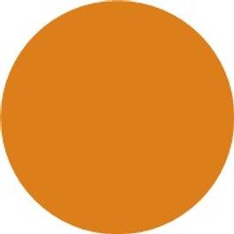 Pumpkin Patch  P02