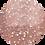 Thumbnail: Champagne Rose D02