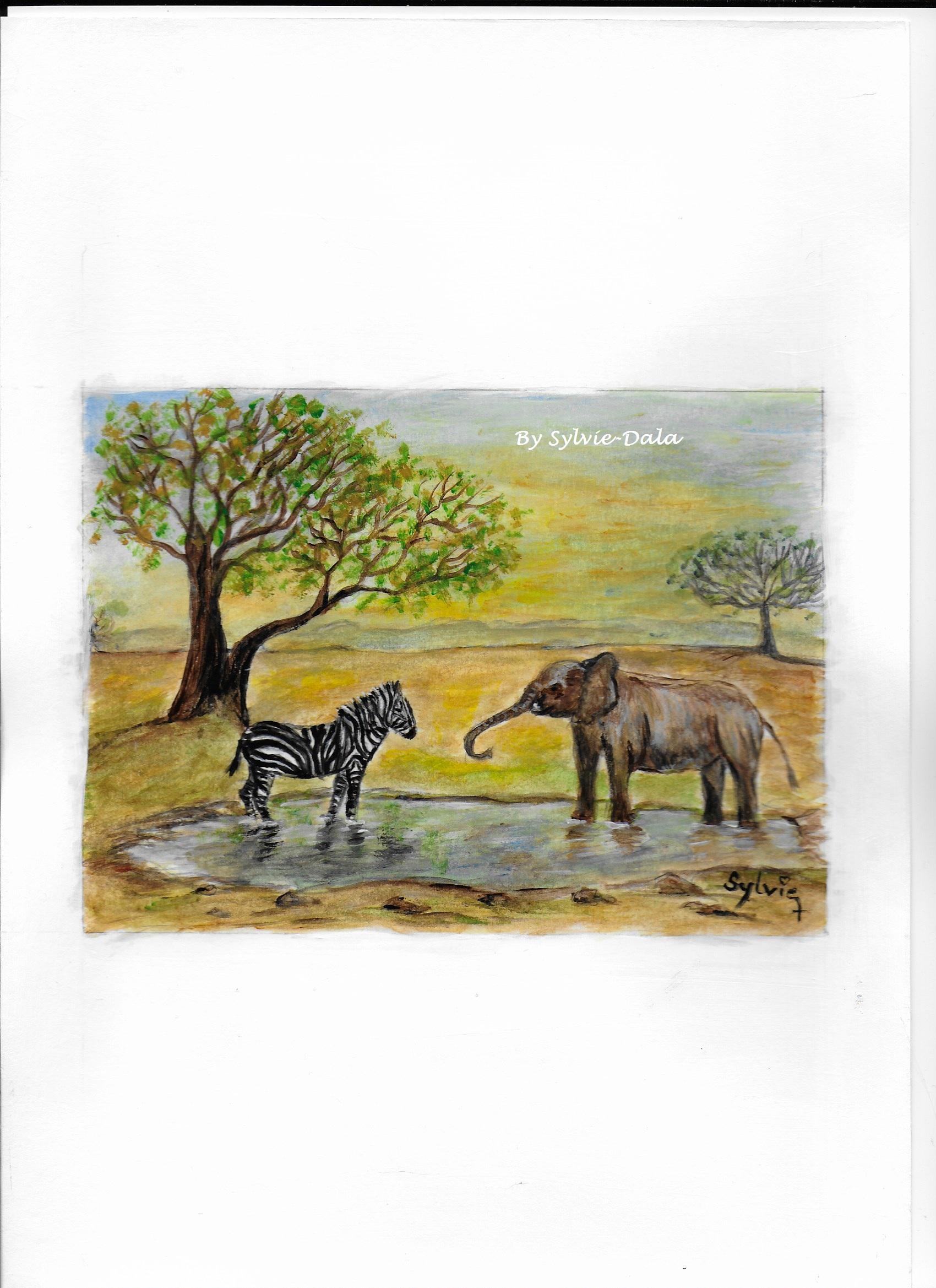 Le zèbre et l'éléphant