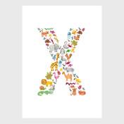 SJD-Animal-Alphabet-X.jpg