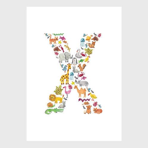 Animal Alphabet: X