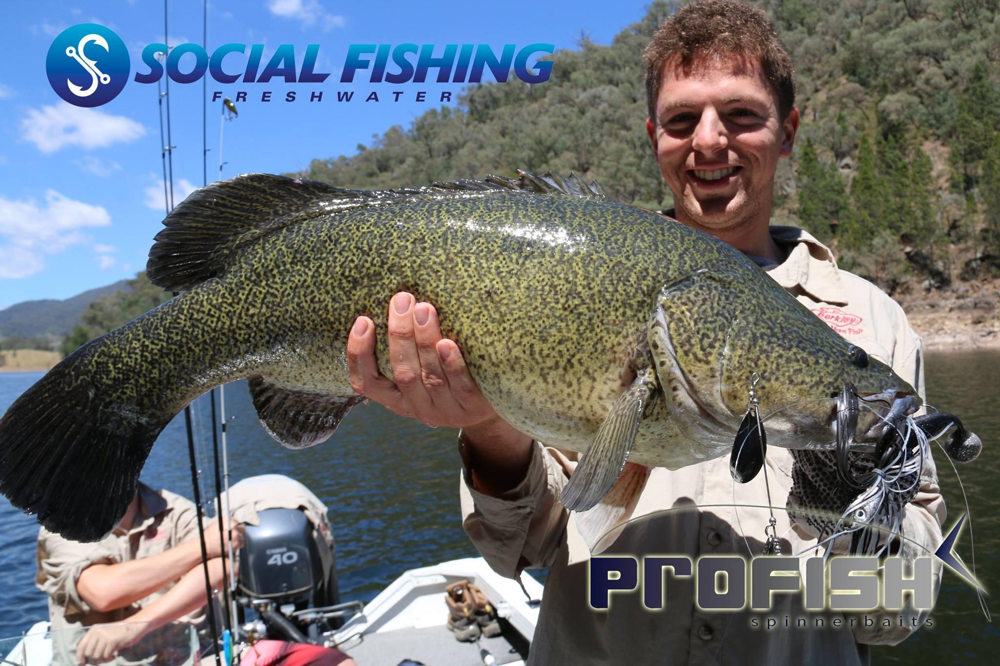Social Fishing Cod