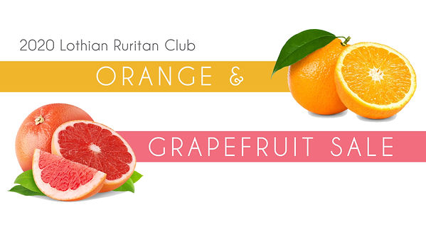 Orange Grapefruit Web.jpg
