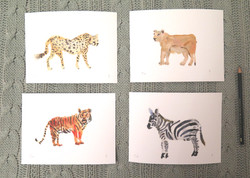 kit animales salvajes