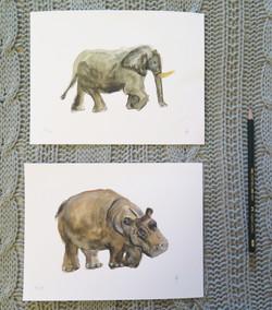 kit elefante hipopótamo