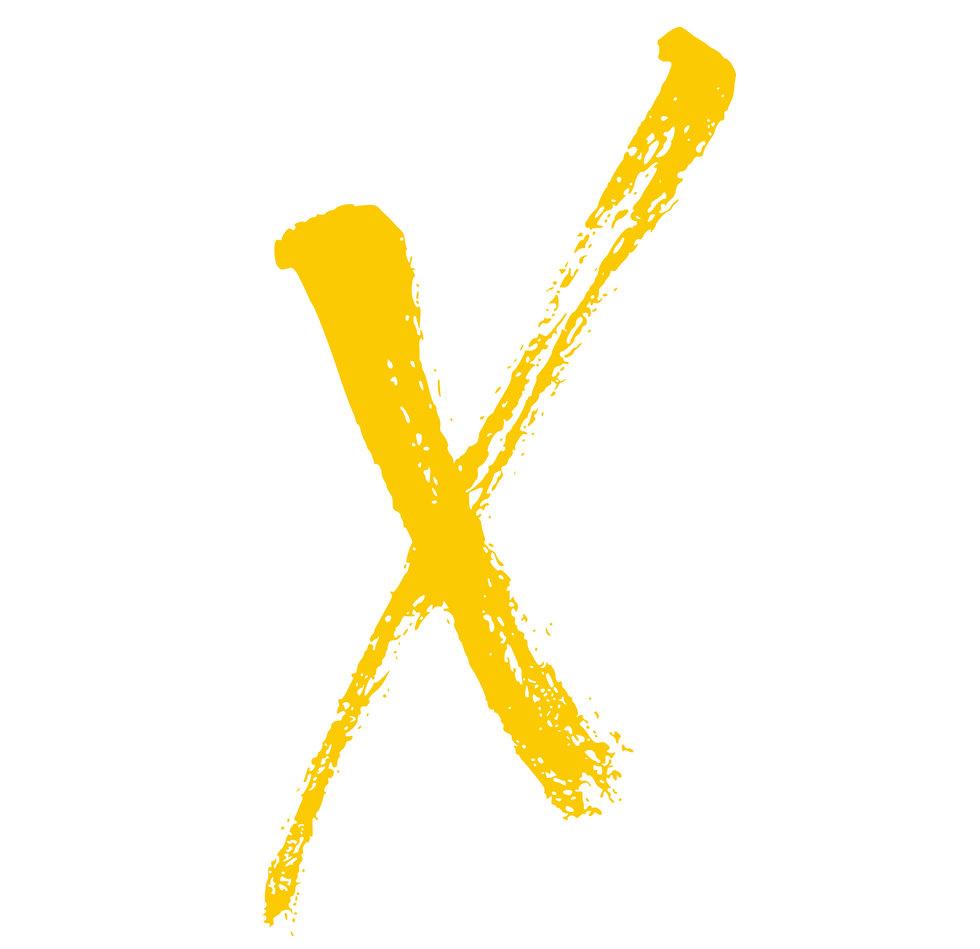 X alone FINAL.jpg