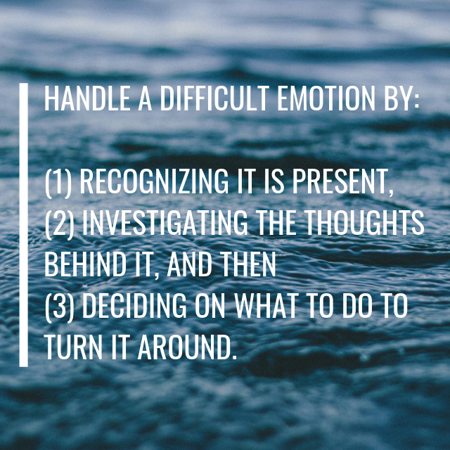 When it Comes to Negative Emotions: RID and Review