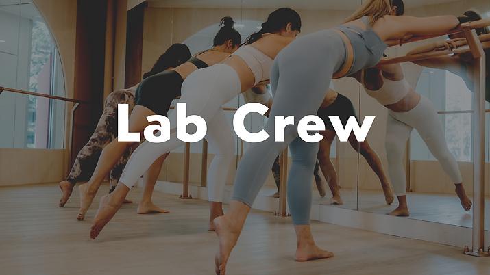 lab crew.png