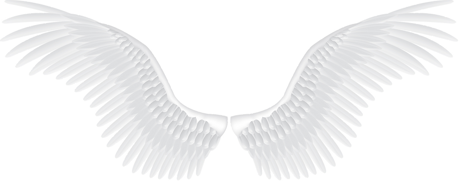 angel-wings-png-transparent-5.png