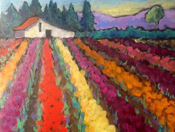 Tulip Farm 2