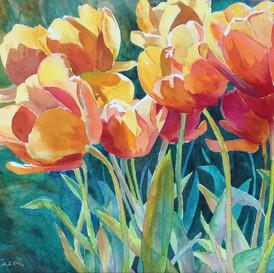 Tulip Garden (Sold)