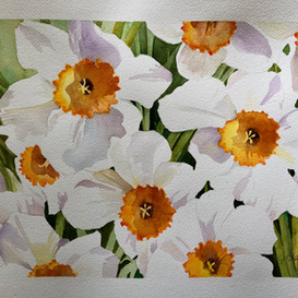 Daffodils (Sold)