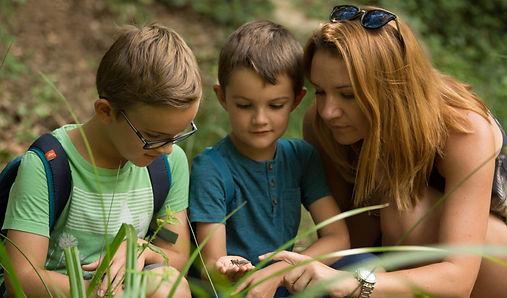 Balades et randonnées à la découverte de la nature pour toute la famille avec un guide specialisé en Corrèze dans le secteur de Tulle.