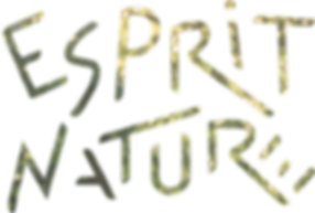 esprit nature logo feuillage.png
