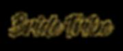 nfbt-logo-png.png