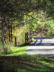 Fitness Trail (Jeannie Porterfield).jpg