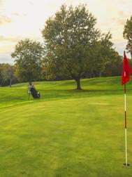 Golf Course (Riley).jpg