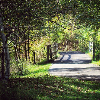 Fitness Trail (Jeannie Porterfield).jpg