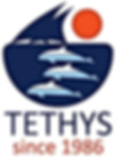 Tethys Research Institute.jpg