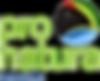 02-Logo_Pronatura_noroeste - 2.png