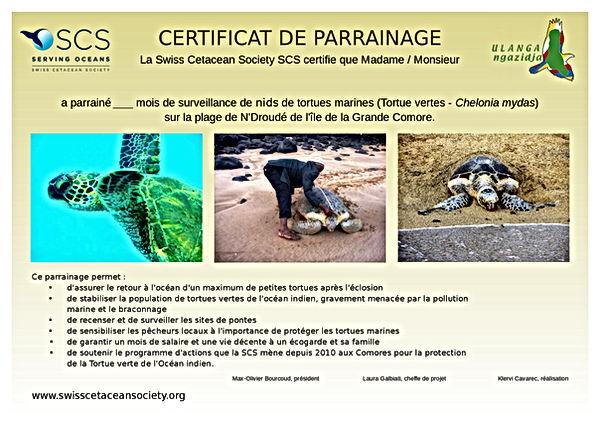 Certificat Tortue.jpg