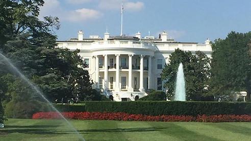 Nom-nom in Washington