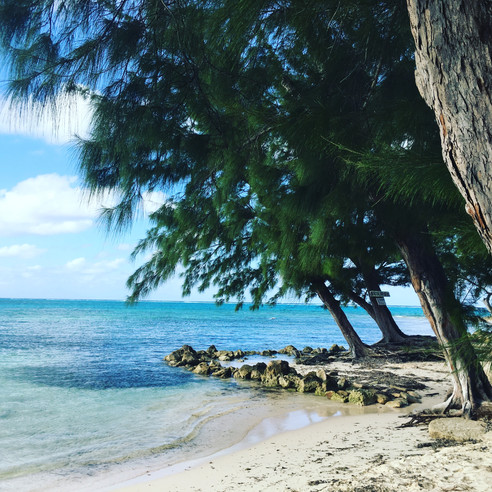 Top Three Places to Eat in Grand Cayman
