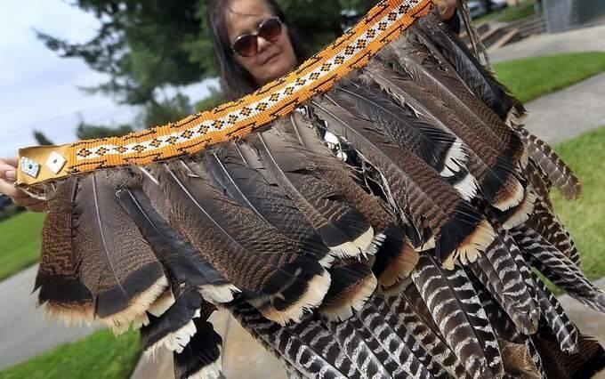 Beautiful Turkey Feathers