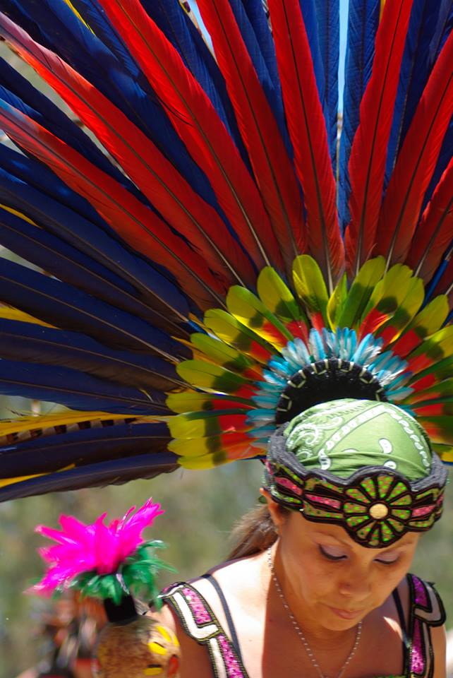 feather headress