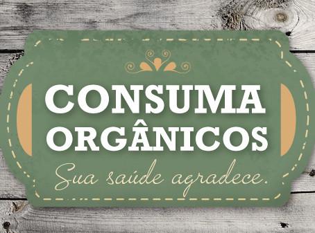 Feira de Produtos Orgânicos - Setembro 2016