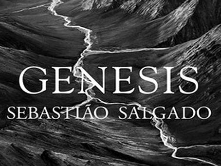 Exposição Genesis: Sebastião Salgado