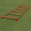 Thumbnail: Pinnacle Speed Ladder