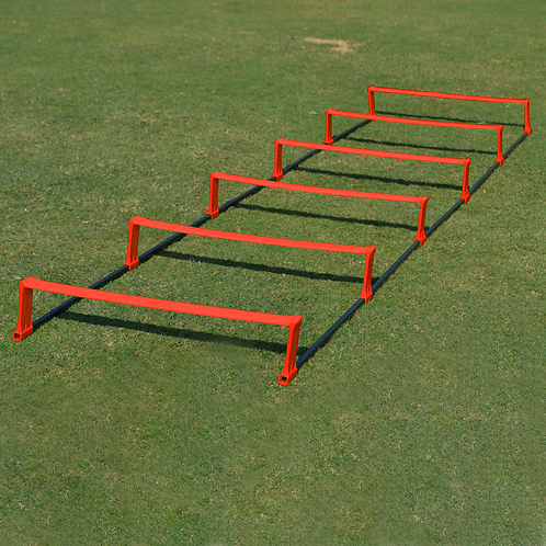 Pinnacle Speed Ladder