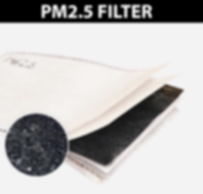 PM2_5-FILTER-BANNER.png