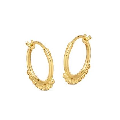 Dainty Gold hoops