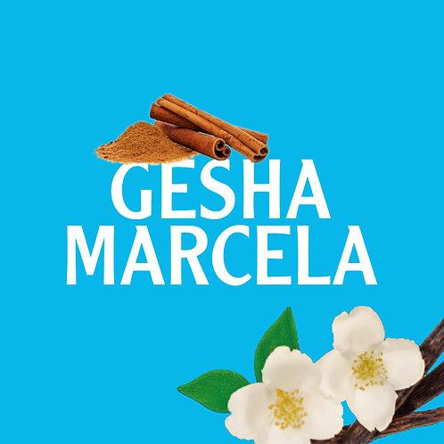 Gesha Marcela