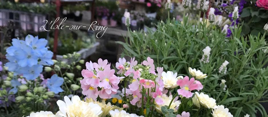 お花に囲まれて…