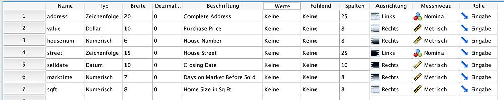 SPSS Auswertung - Variablenansicht