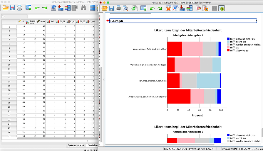 SPSS Auswertung