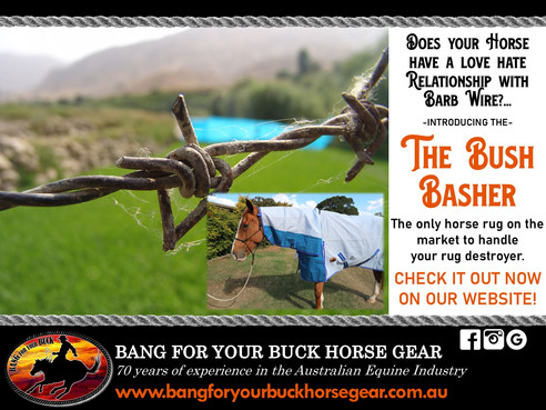bang-for-your-buck-horsgear-bush-basher-