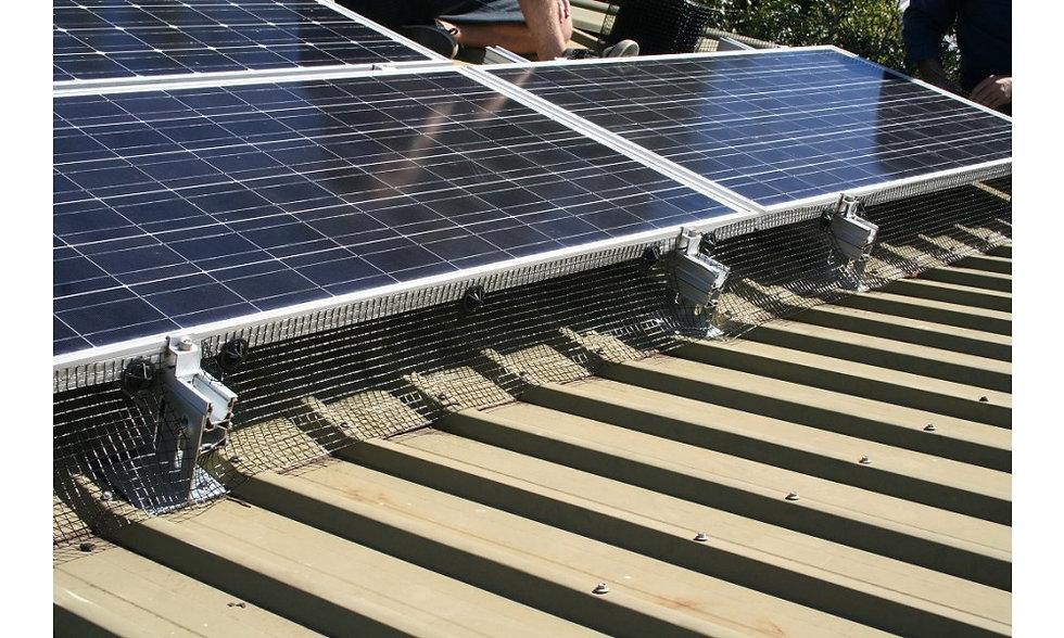 solar-panel-bird-proofing.jpg