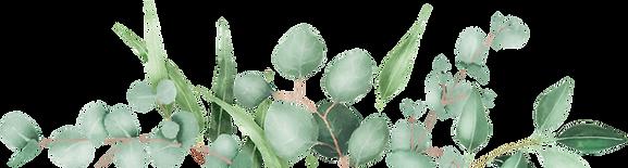 256-2560933_derek-laura-eucalyptus-frame
