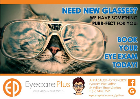 cat_new_glasses_book_eye_exam_test_eyeca