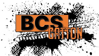 BCSG_07.png