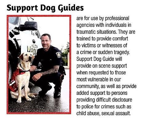 support dog.jpg