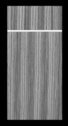 Zebra Wood Sleek Door Style